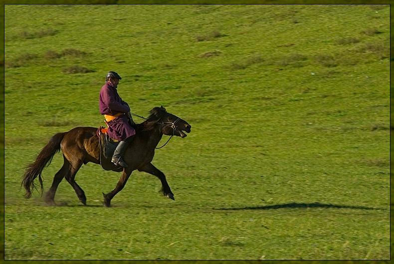 Bulgan  - Running Horse