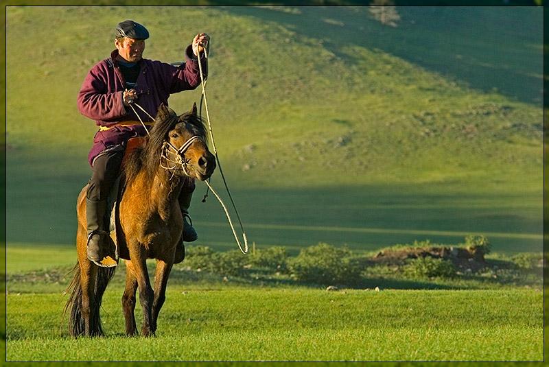 Bulgan  - Horseman